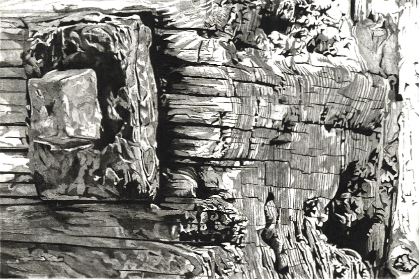 TIME AND TIDE - Weathered and wave beaten groyne on Winchelsea Beach .TIME AND TIDE -Limited edition etching by Colin Bailey
